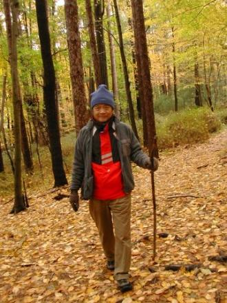 Sunday walk in the woods on the Appalachian Trail